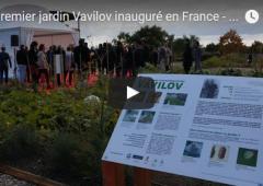 Vidéo : premier jardin Vavilov